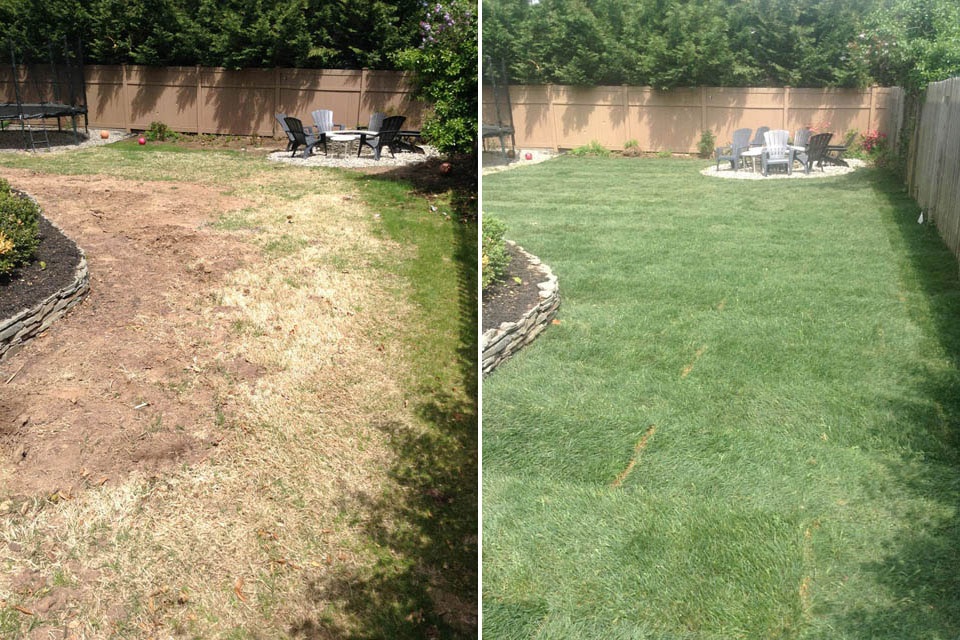Landscaping with Sod - Before & After