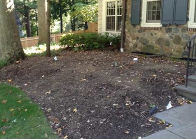 Front Yard Landscape - Before